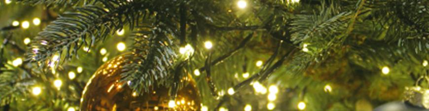 Tuincentrum Coppelmans | Oss | Nuenen | Kerstverlichting | Kerstboomverlichting