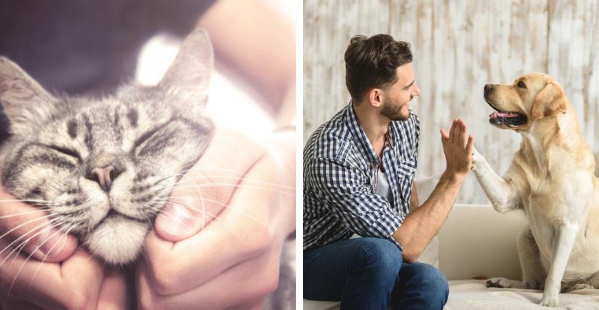 Alles voor uw huisdieren vindt u bij Tuincentrum Coppelmans