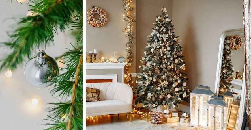 Tuincentrum Coppelmans - Kerst